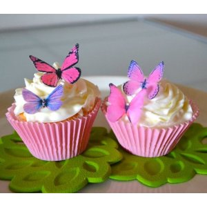 butterfly cake and cupcake decoration