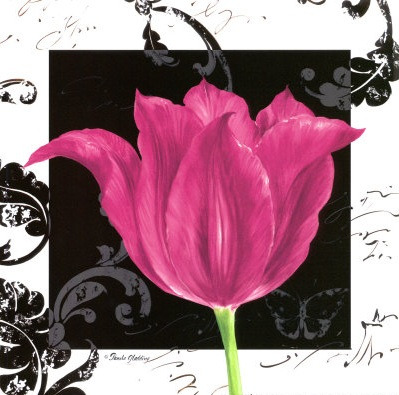 Flower art: Pink tulip with stylish black damask - art print poster